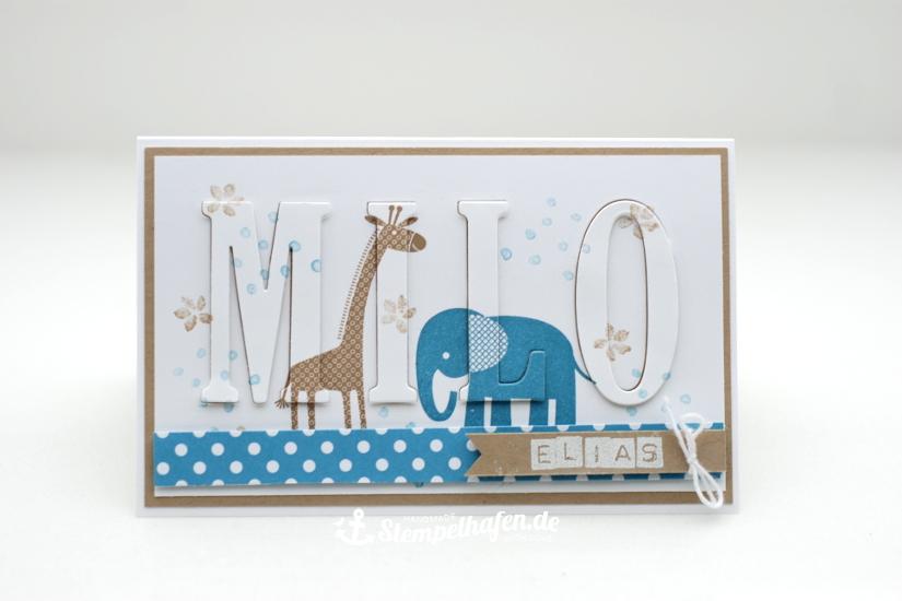 Eclipsekarte Zoo Babys Karte Zur Geburt Diy Hobby