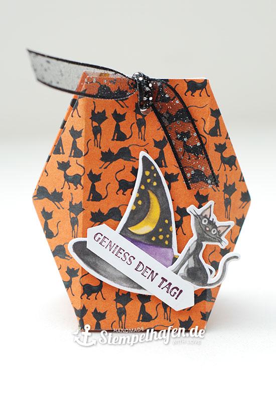 Facettenbox mit Katze für Halloween